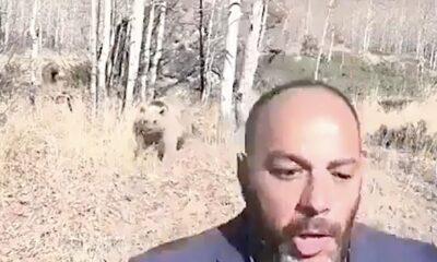 ayı saldırısı