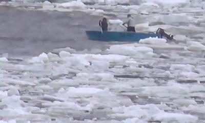 buz paröası
