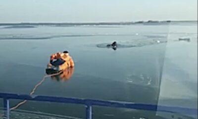 buz kurtarma