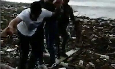 kopek kurtarma denizde