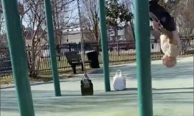 AMZ 0008 Old man swings